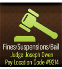payment court icon nav 02